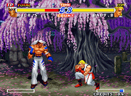 Real Bout Fatal Fury 2, The Newcomers (Set 2)